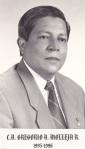 1995 C.A. Gregorio A. Molleja R.